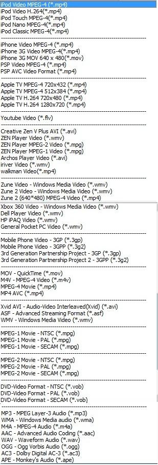 Wondshare FLV Downloader Pro Outputs