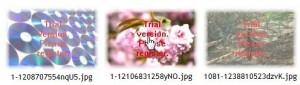 2009-09-04_000630