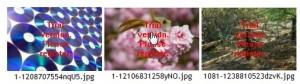 2009-09-04_001113