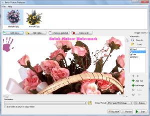 2009-11-11_003836