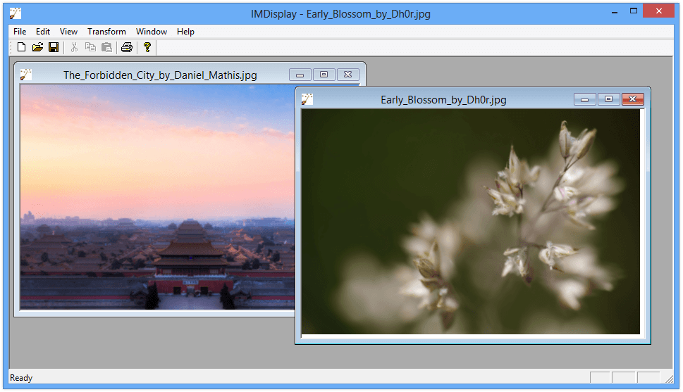 IMDisplay - Early_Blossom_by_Dh0r.jpg