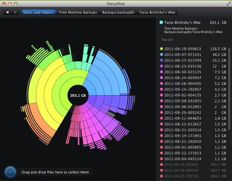 DaisyDisk's findings