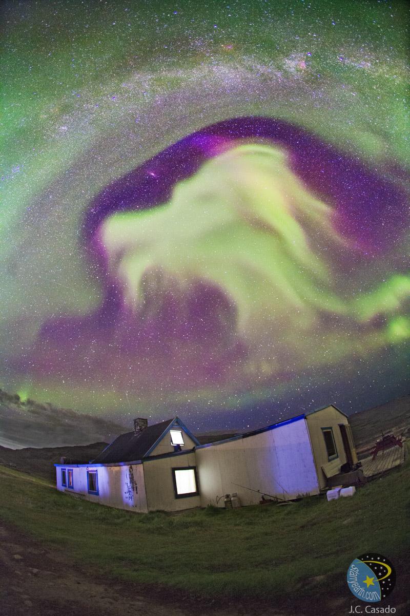 goat_aurora_borealis