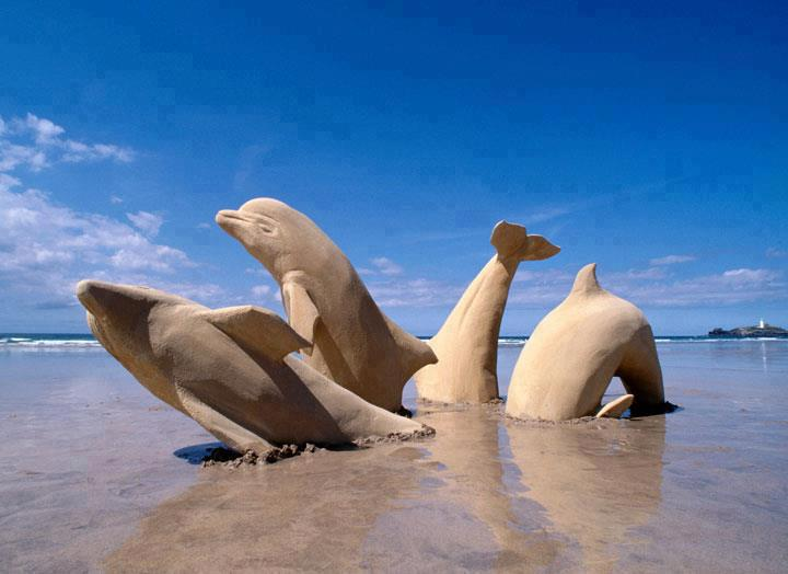 sand_dolphins