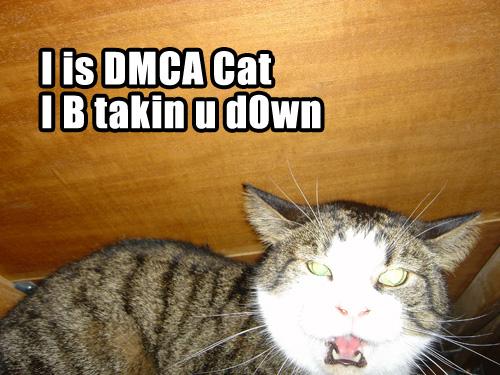 dmca_cat