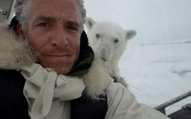 polar_bear_3