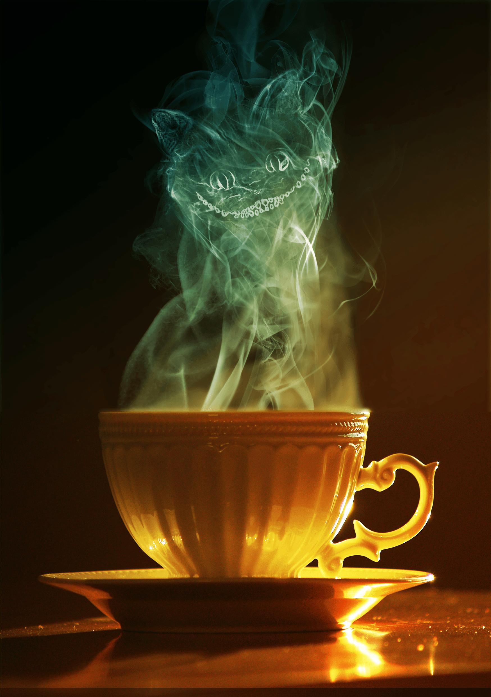 cat_coffee