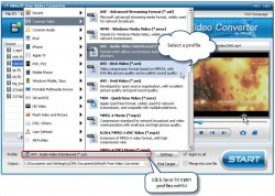 iwisoft video converter