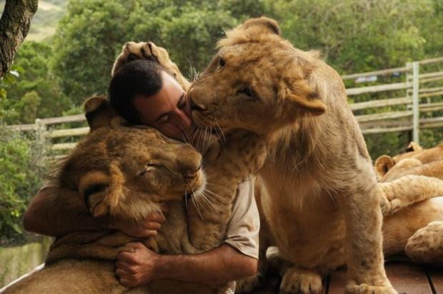 lion_whisperer_1