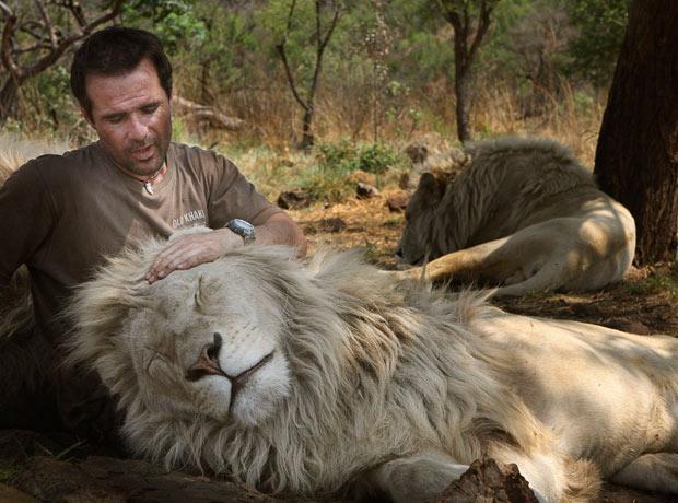 lion_whisperer_12