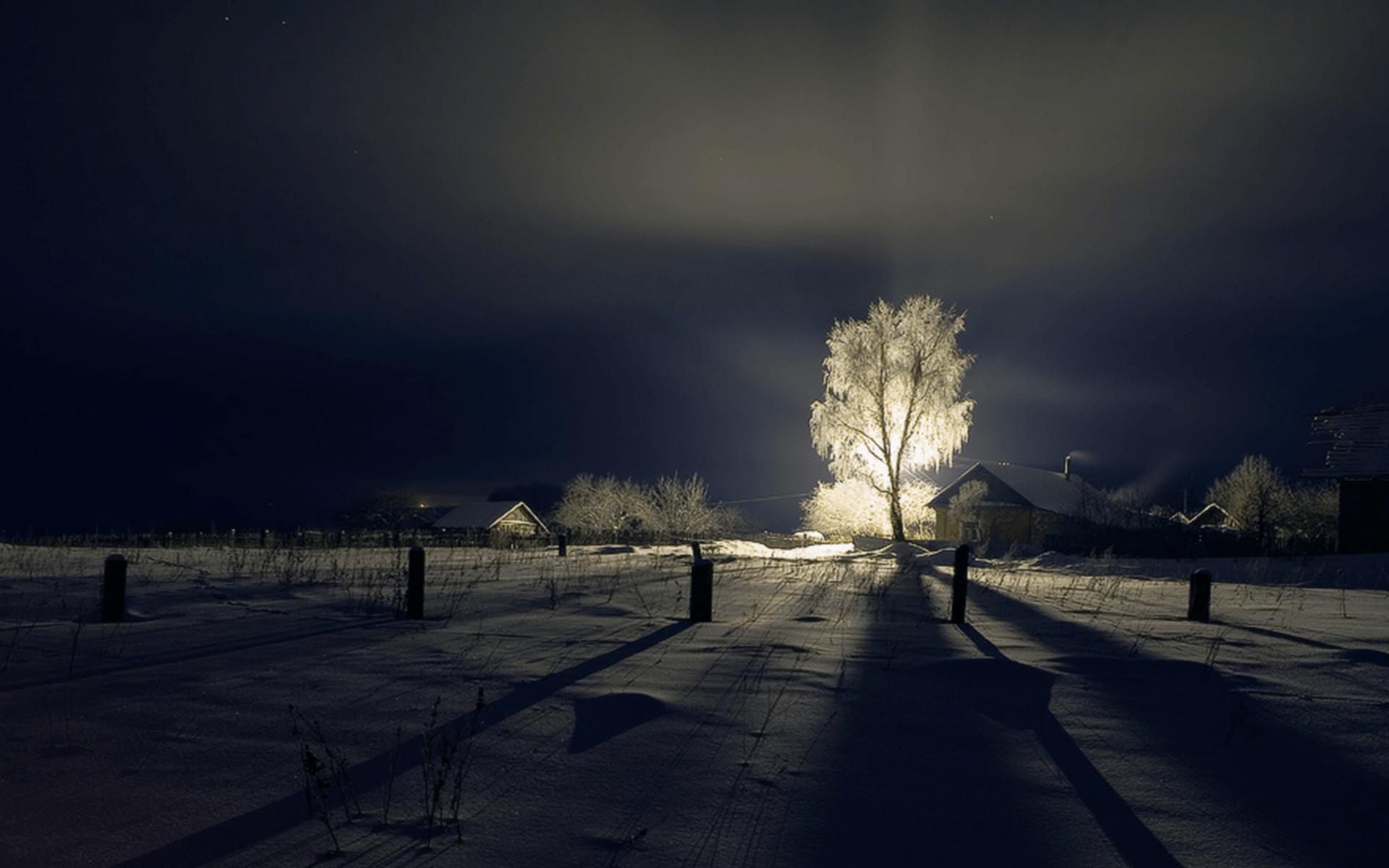 winter_scene
