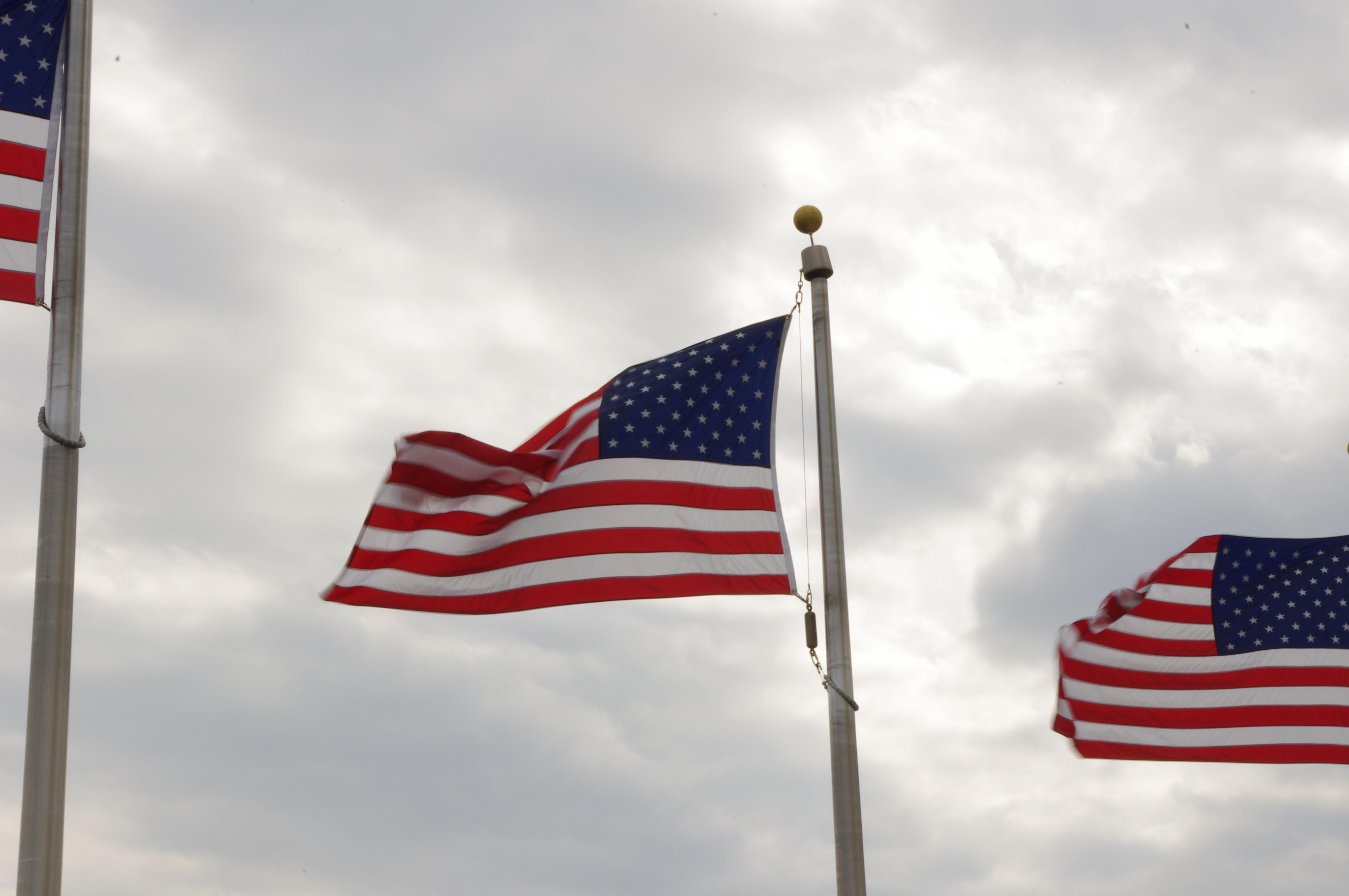 american_flags