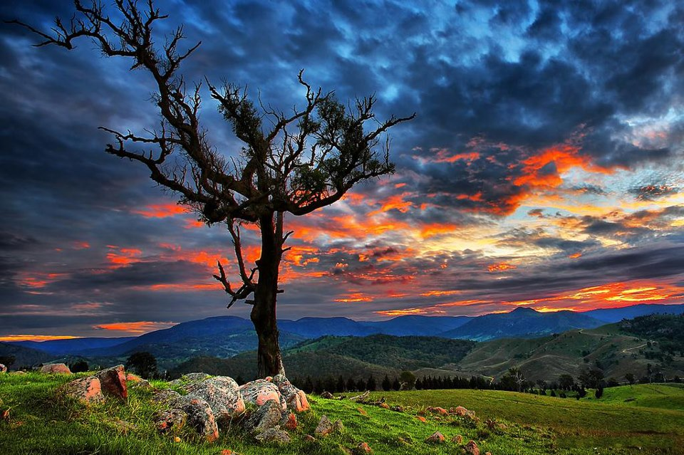 beautiful_nature