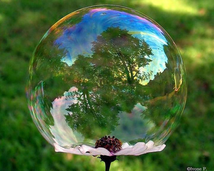 bubble_reflection