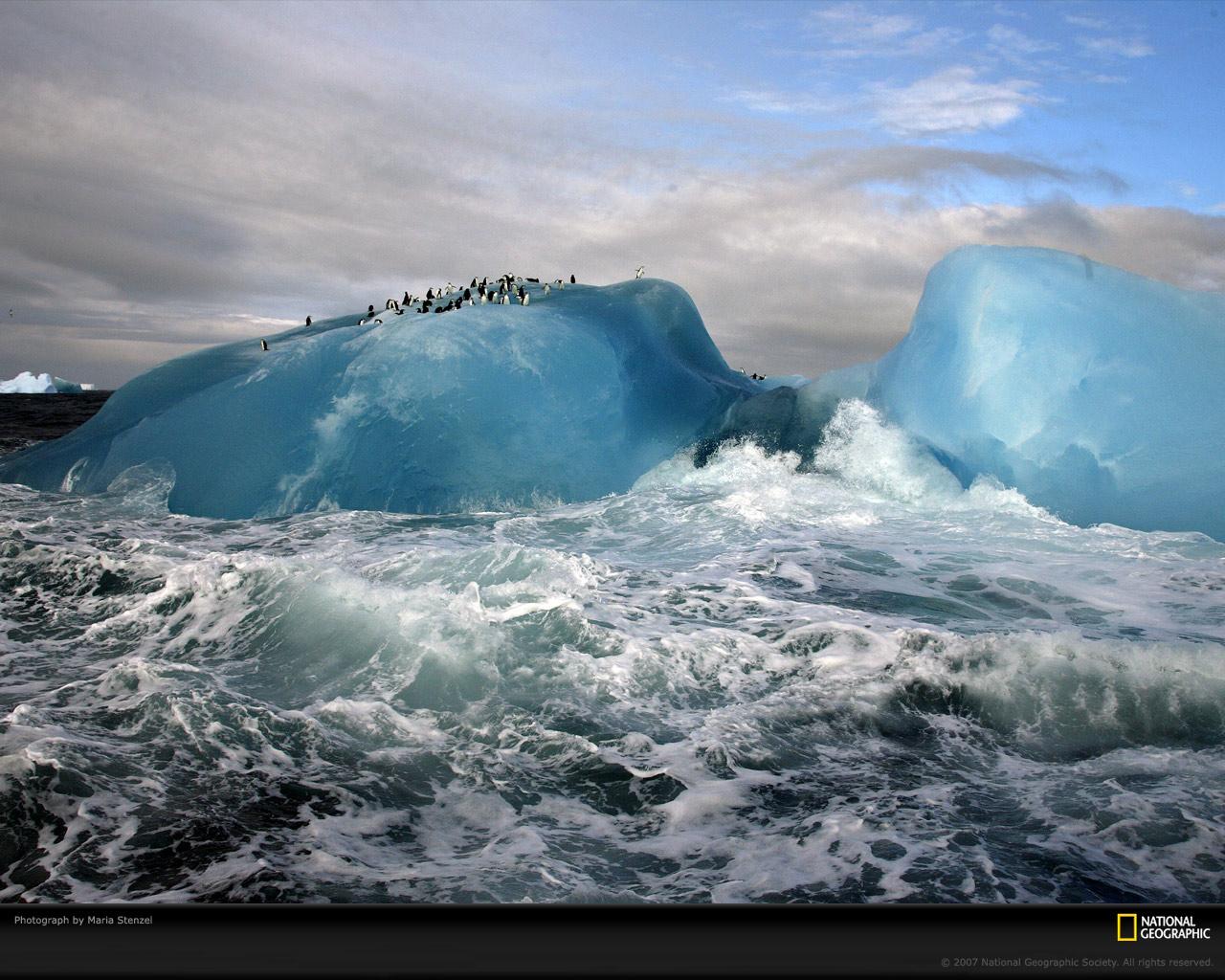 penguins_blue_iceberg