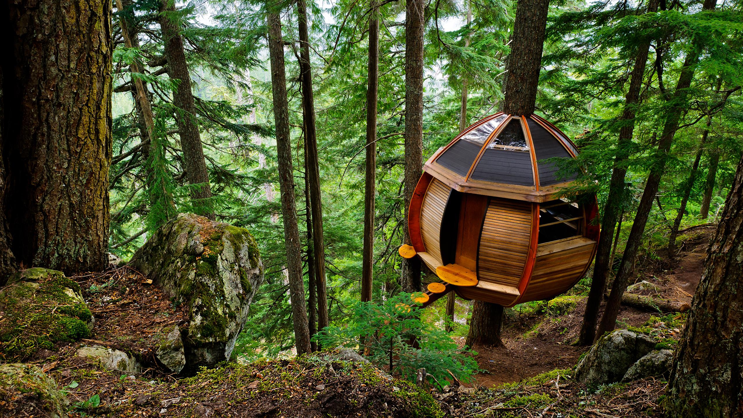 secret_treehouse