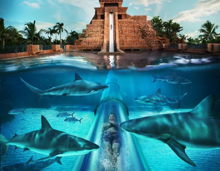 Awesome Water Slide At Atlantis Paradise Island Resort In Bahamas Amazing Photo Of The Day Dottech