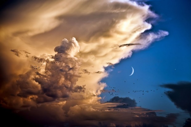 venus_moon_birds_clouds_photo