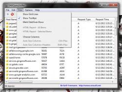 DNSQuerySniffer view menu