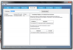 NetToolset Reverse DNS tool