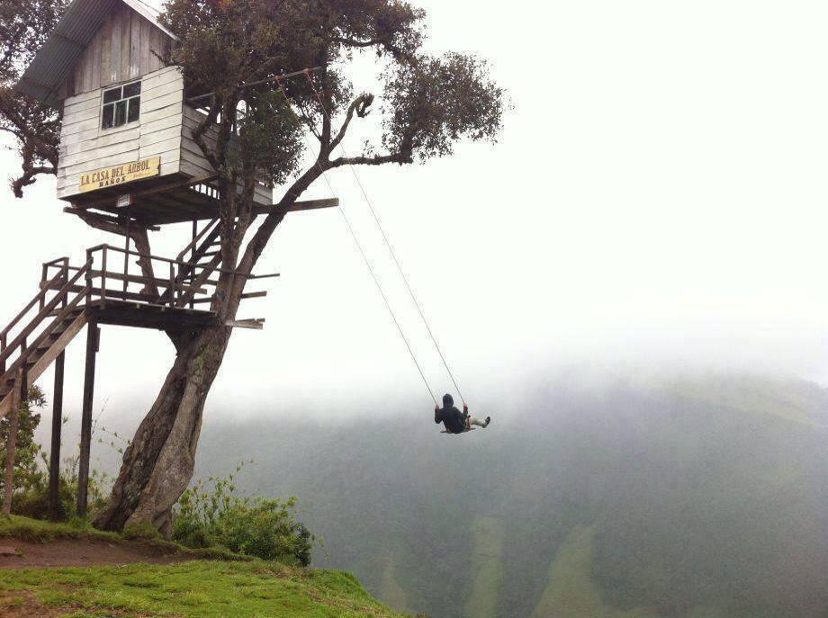 the_swing