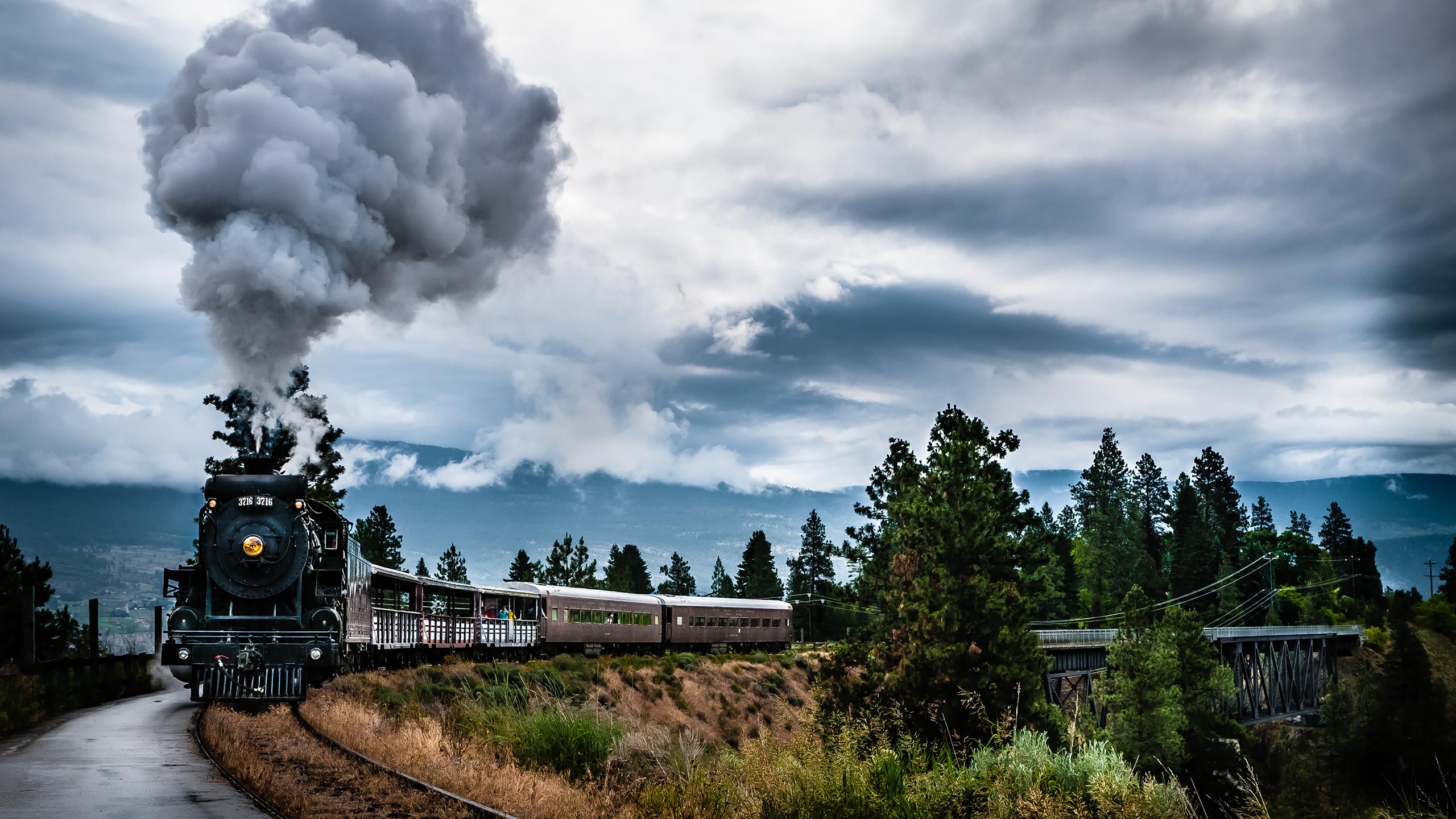 train_steam_2560x1440