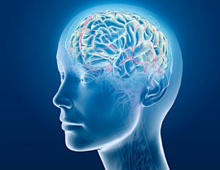 Brain(waves)