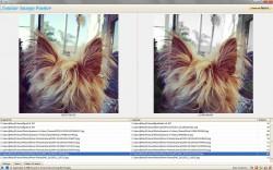 Similar Image Finder UI 2
