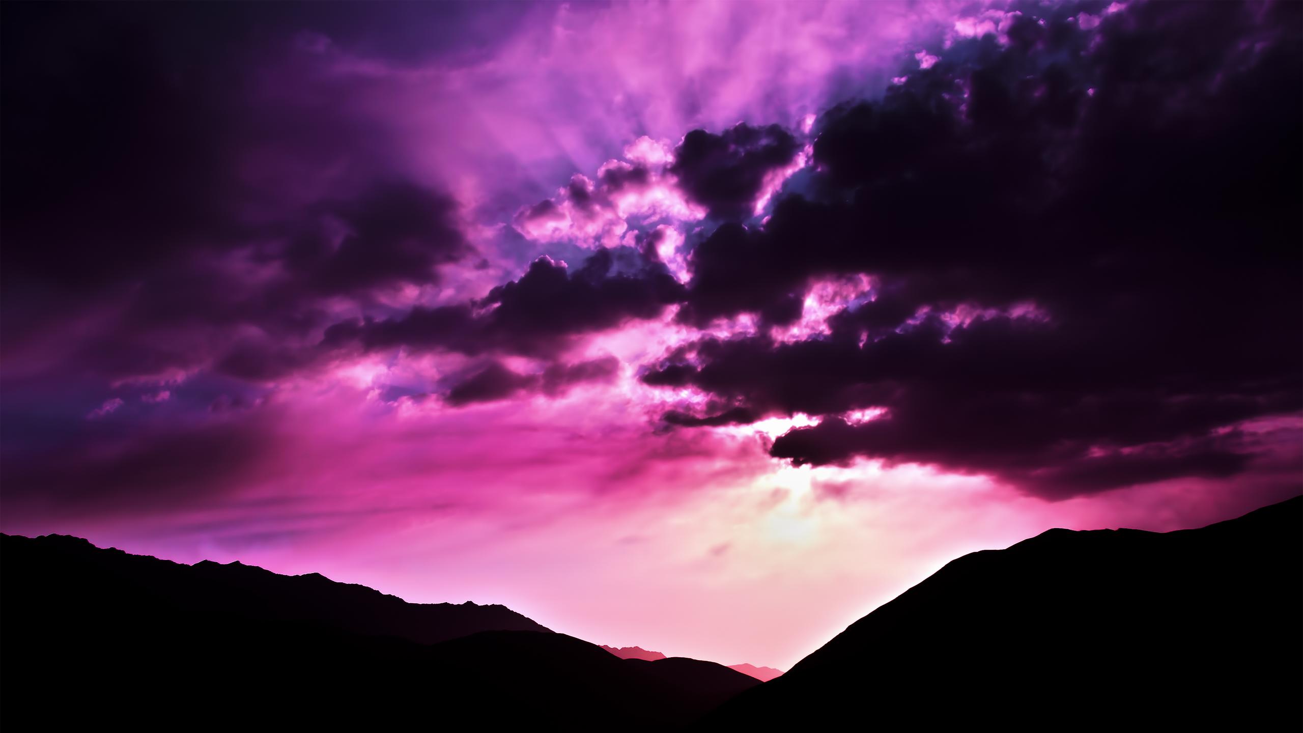 purple_morning_2560x1440