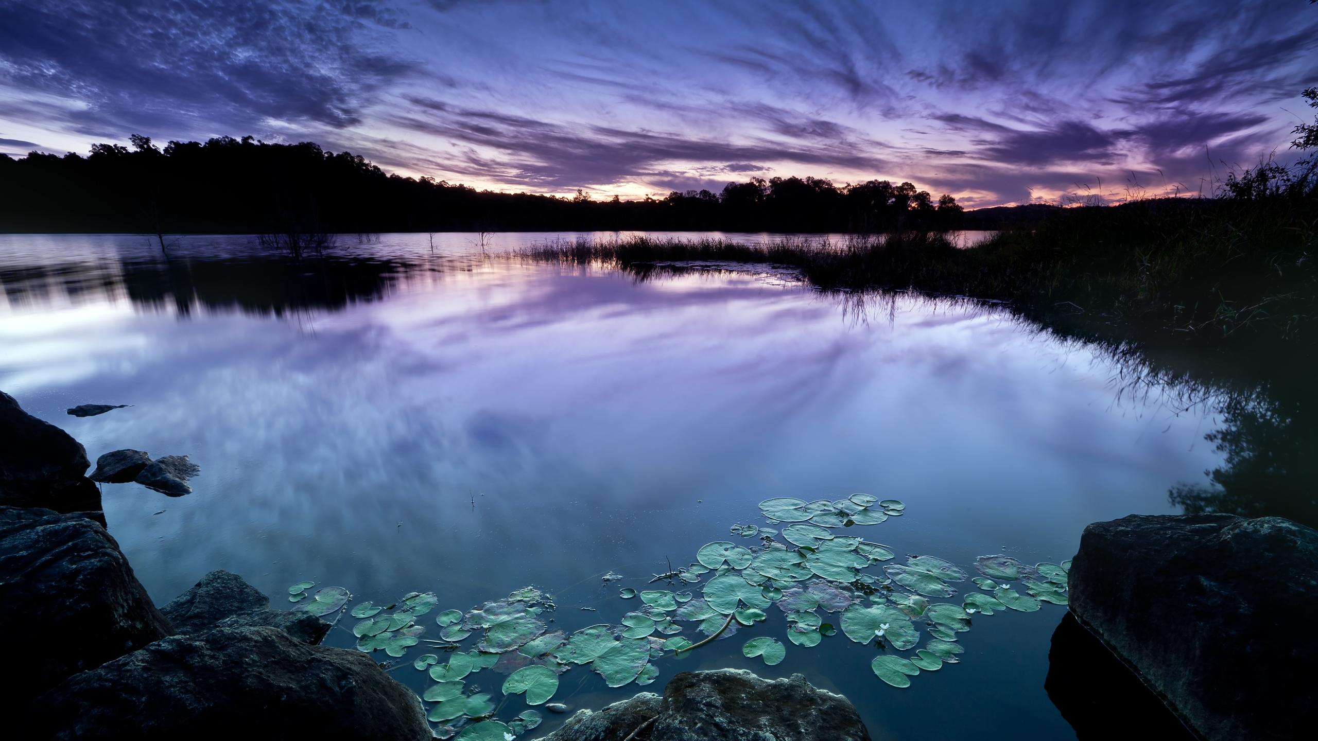 purple_sky_2560x1440