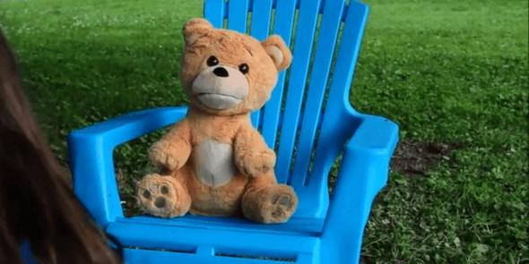supertoy teddy