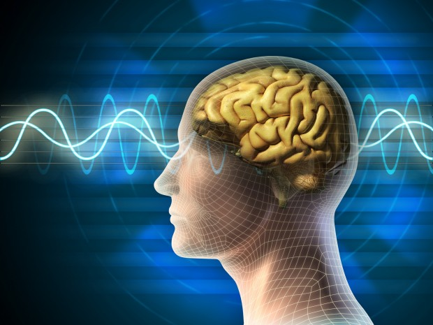 Brain-waves