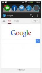 Portal web browser windows