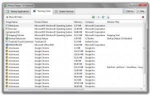 Startup Delayer running tasks