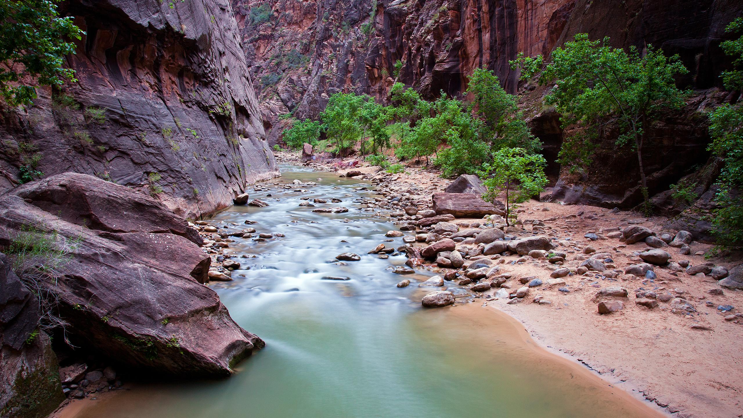 beautiful_creek_utah_wallpaper_2560x1440