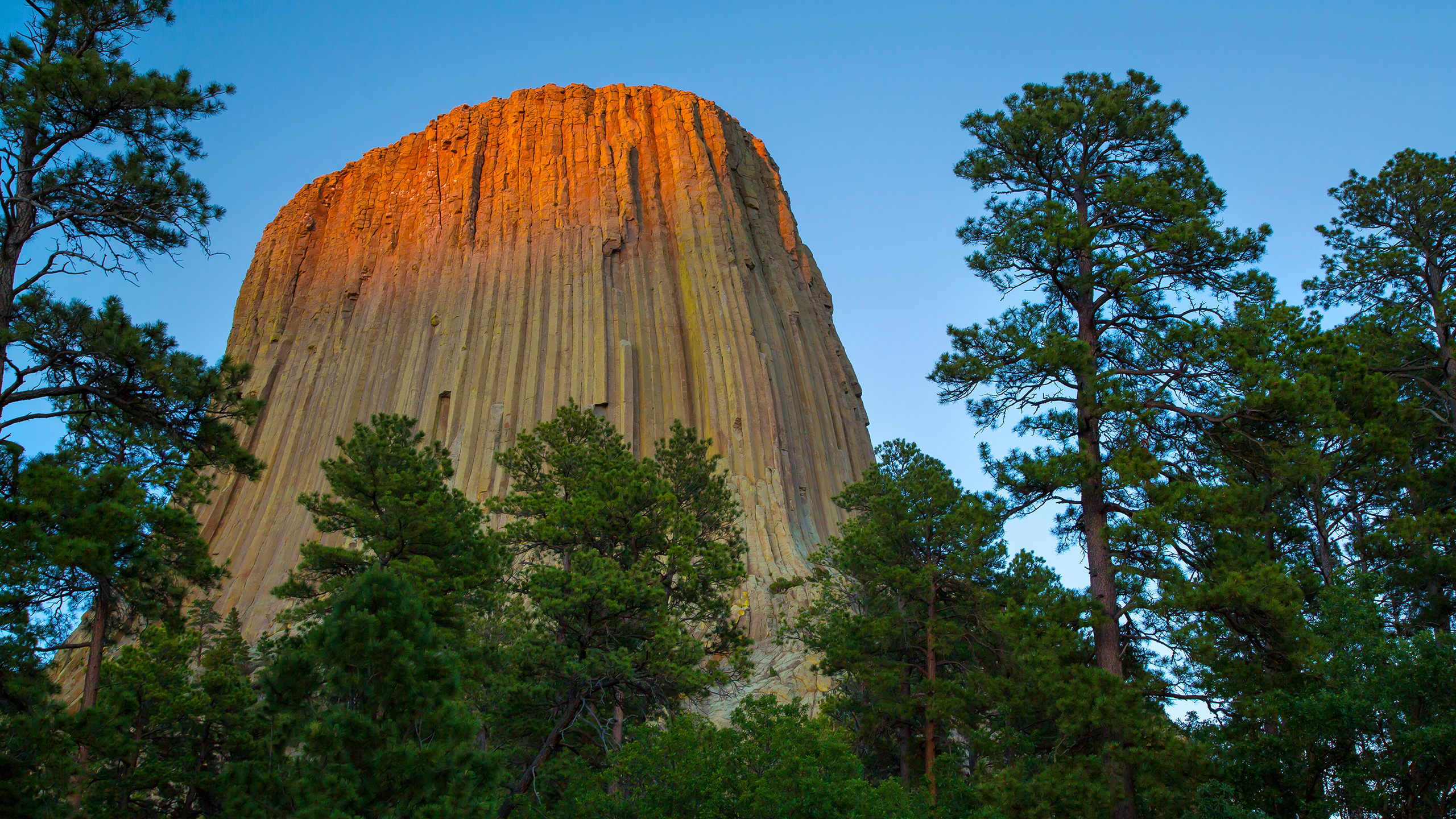 devils_tower_wallpaper_2560x1440