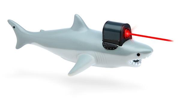shark_w_frickin_laser_pointer