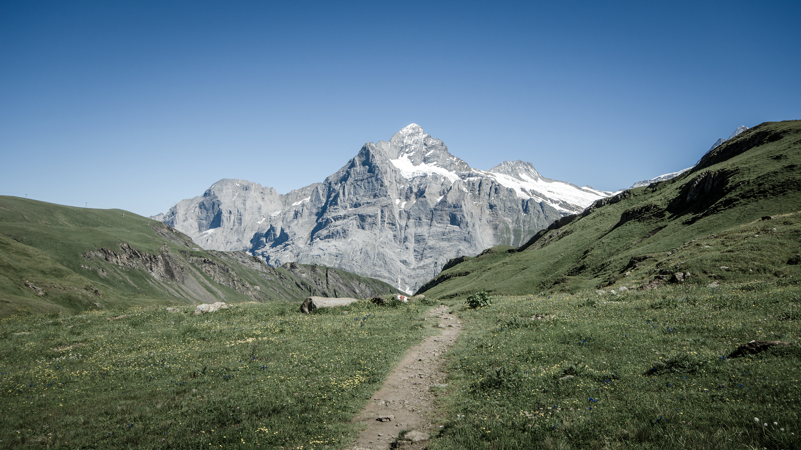 the_mountain_wallpaper_2560x1440