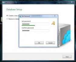 Safe In Cloud database password