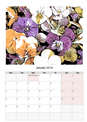 Pically Calendar 2014