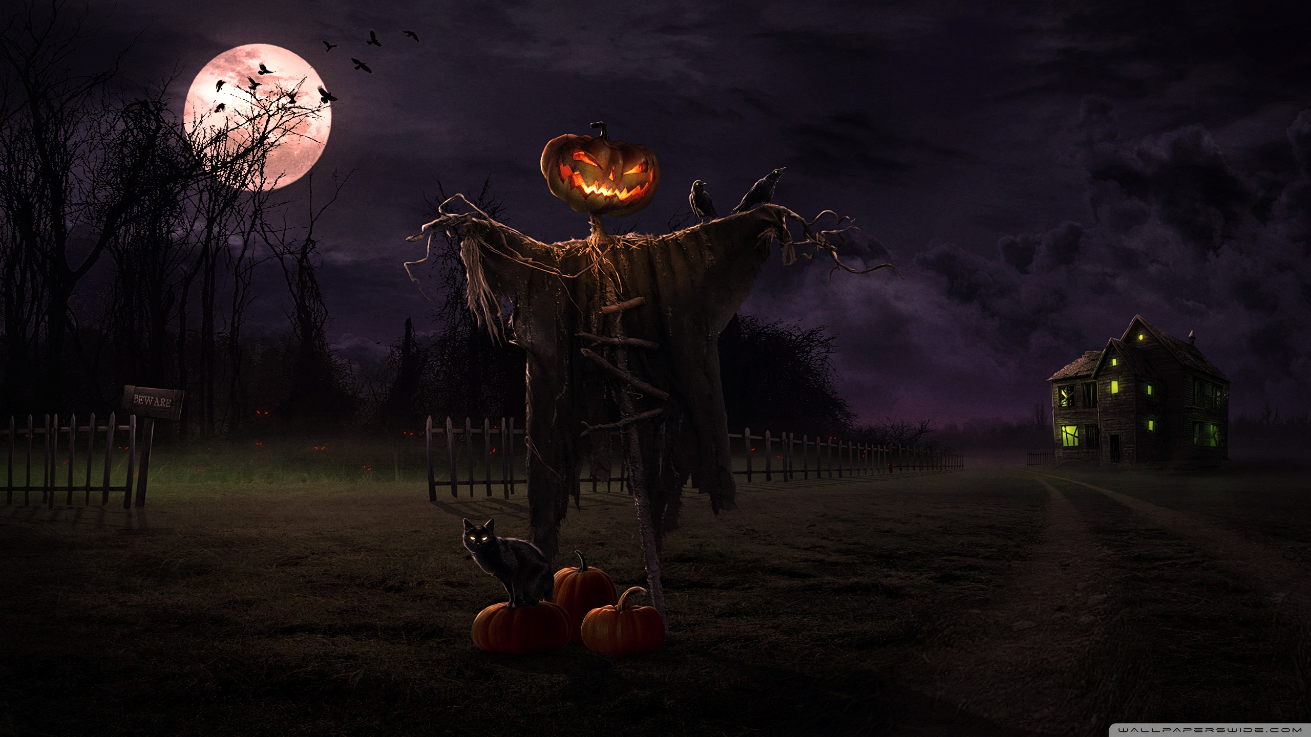 spooky_path-wallpaper-2560x1440