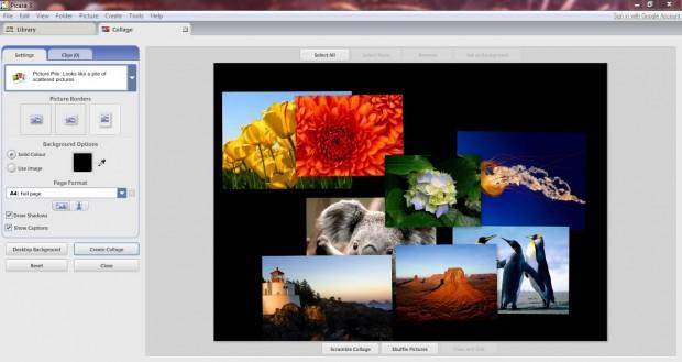 Picasa Picture Pile 1