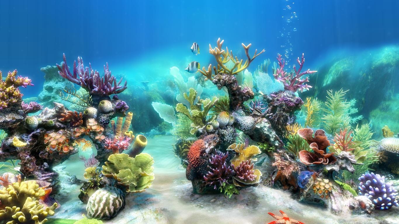Sim Aquarium 8
