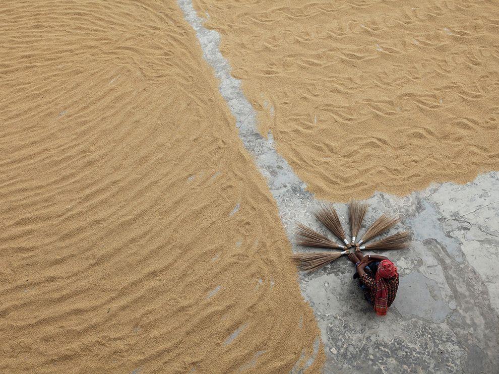 rice-mill-worker-bangladesh_73346_990x742