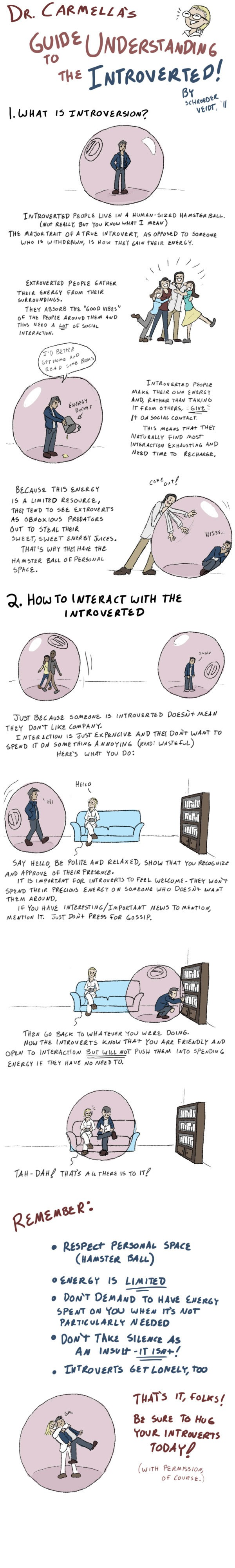 the introvert