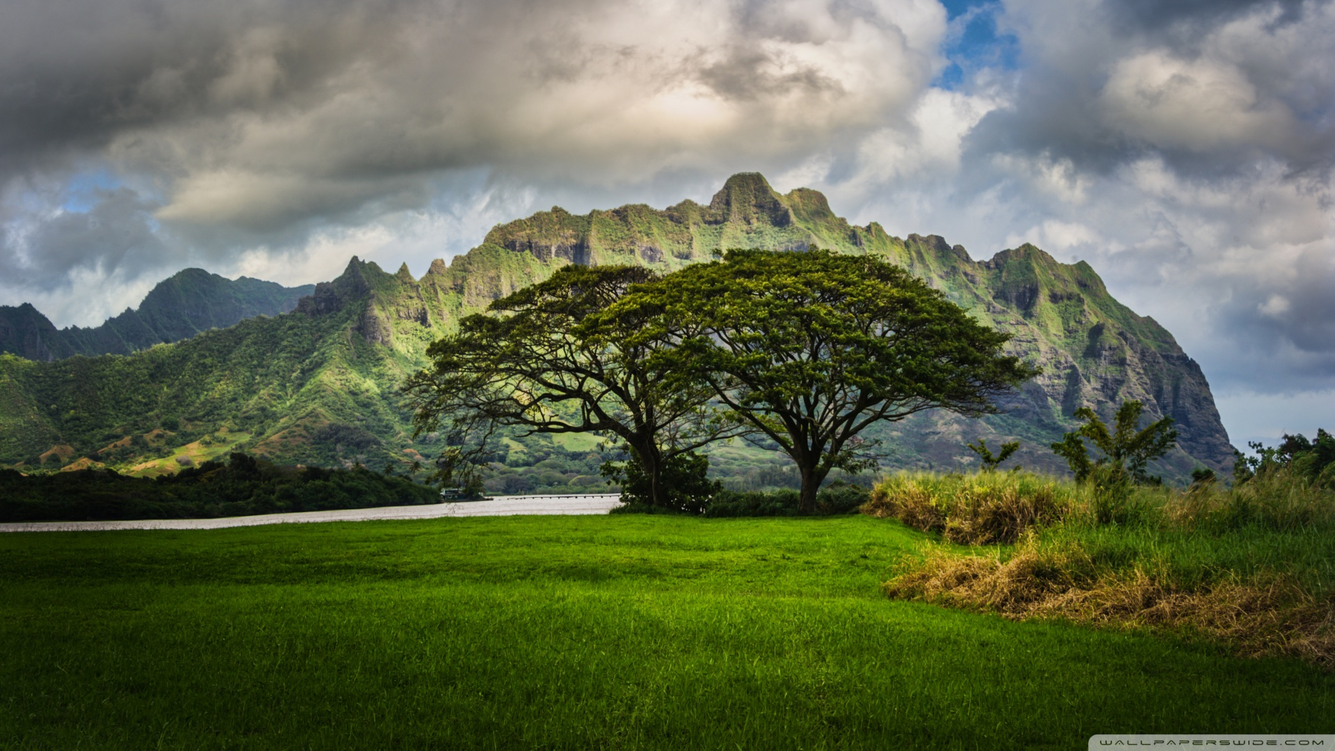 the_lost_cliffs_of_oahu-wallpaper-1920x1080