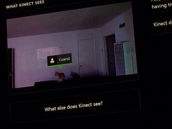 xbox one guest cat