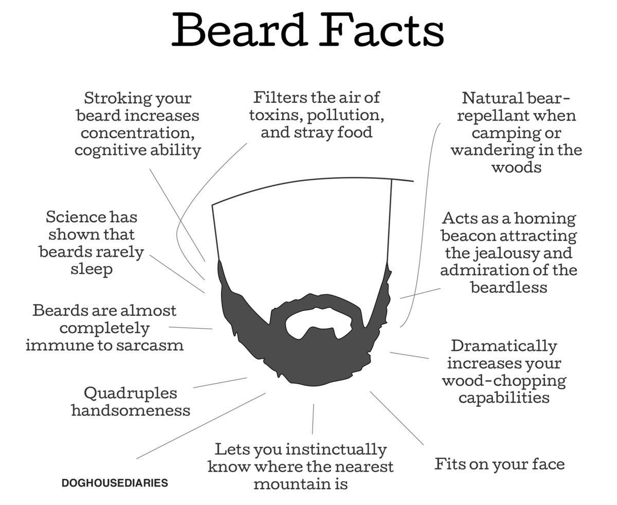 Beard-Facts-Comic