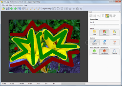 Picture Cutout Guide Lite for Windows 2