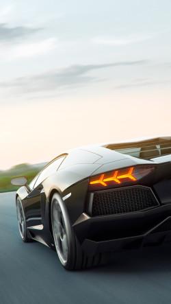 Black-Lamborghini-Aventador-Back-250x443